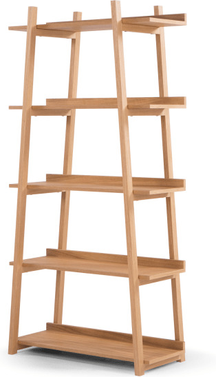 An Image of Darcey Shelves, Oak