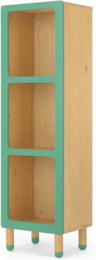 An Image of Chase Storage Shelving Unit, Pine and Green