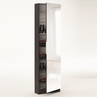 An Image of Steiner Mirrored Shoe Cabinet In White And Ebony