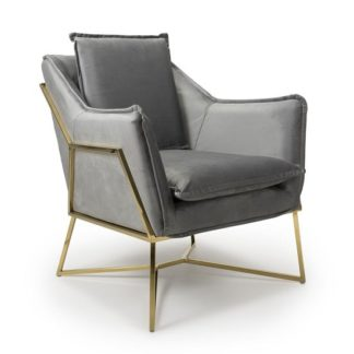 An Image of Carrello Arm Chair In Brushed Velvet Grey With Gold Frame