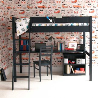 An Image of Pippin Childrens Highsleeper with Full Length Desk And Storage Bookcase