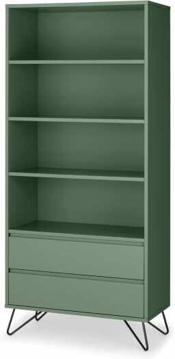 An Image of Elona Bookcase, Fern Green & Black
