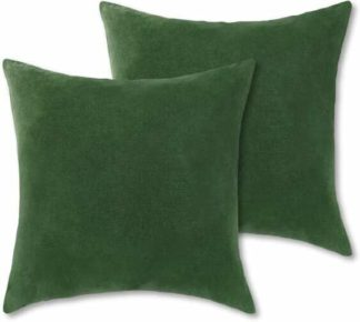 An Image of Lorna Set of 2 Velvet Cushions, 45 x 45cm, Leaf Green