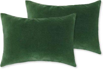 An Image of Lorna Set of 2 Velvet Cushions, 35 x 50cm, Leaf Green