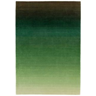 An Image of Ombre Rug Green