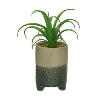 An Image of Medium Grey Pot Plant