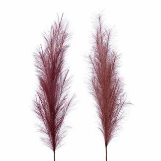 An Image of Set of 2 Rust Pampas Grass