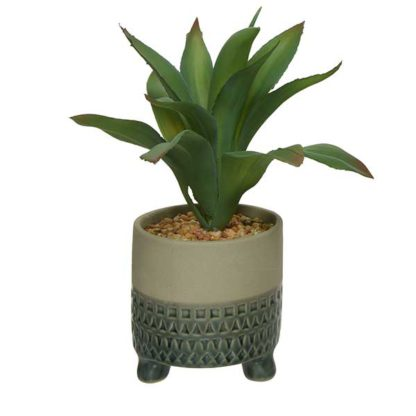 An Image of Small Grey Pot Plant