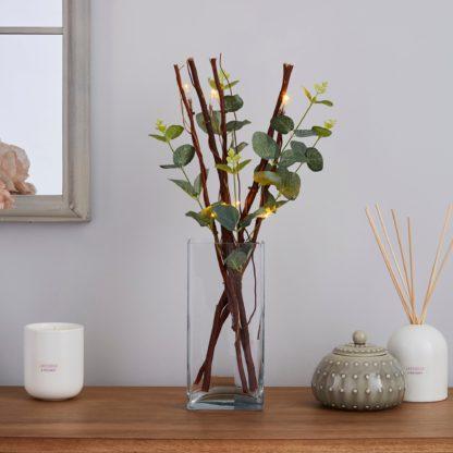 An Image of Green Eucalyptus Brown Mini Twig Lights Green