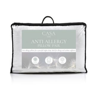An Image of Anti Allergy Pillow
