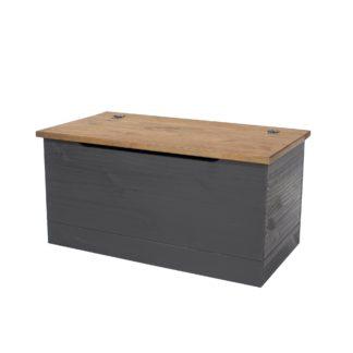 An Image of Corona Carbon Storage Trunk Grey